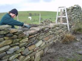 Comment mettre en valeur un mur en pierres ?